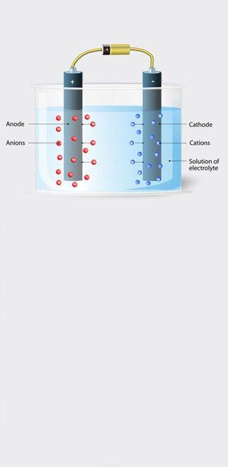 レクトロポール 短い研磨時間と高い再現性
