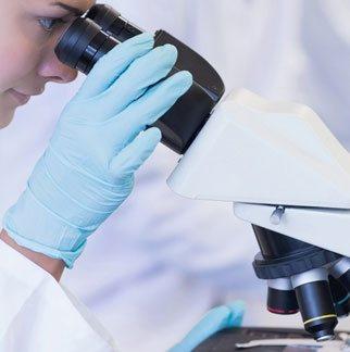 显微镜检查偏振光