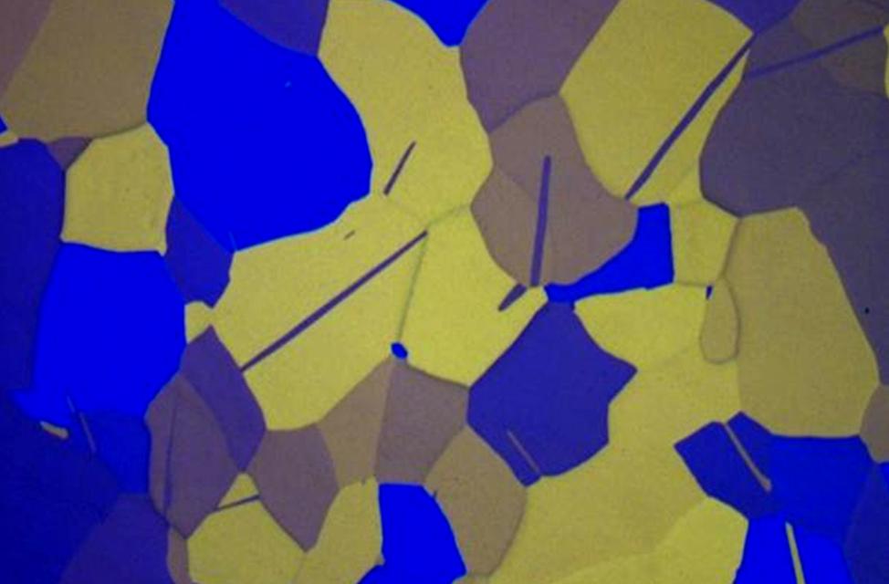 Luz polarizada del microscopio