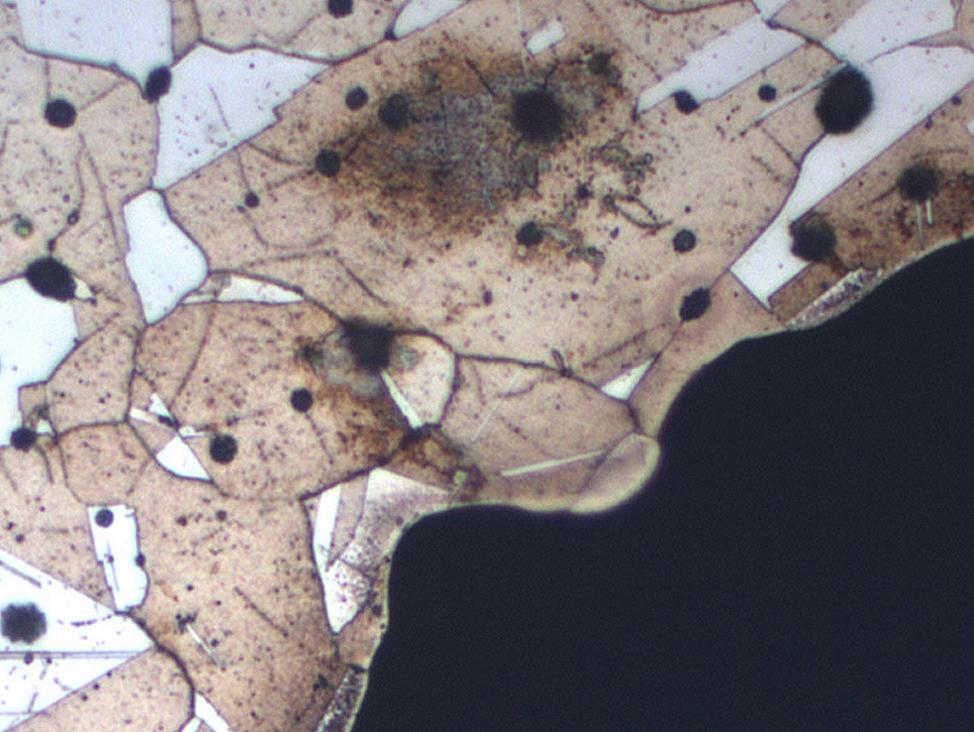 透射电子显微镜检查