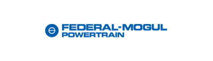 Logotipo de Federal-Mogul Powertrain